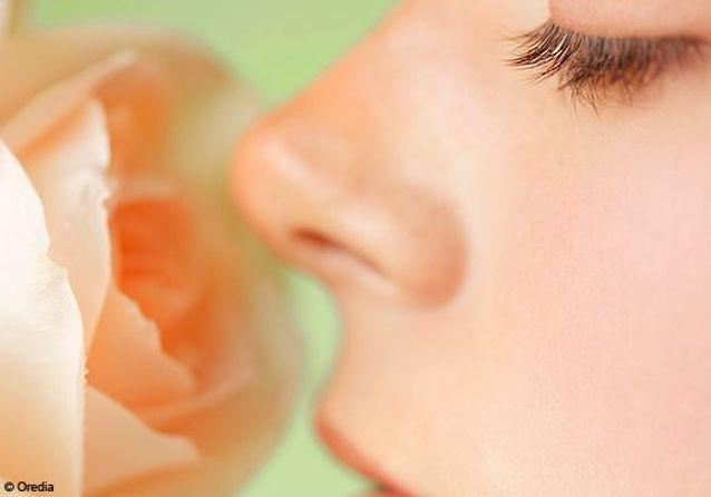 Parfum : quatre nouveautés décryptées