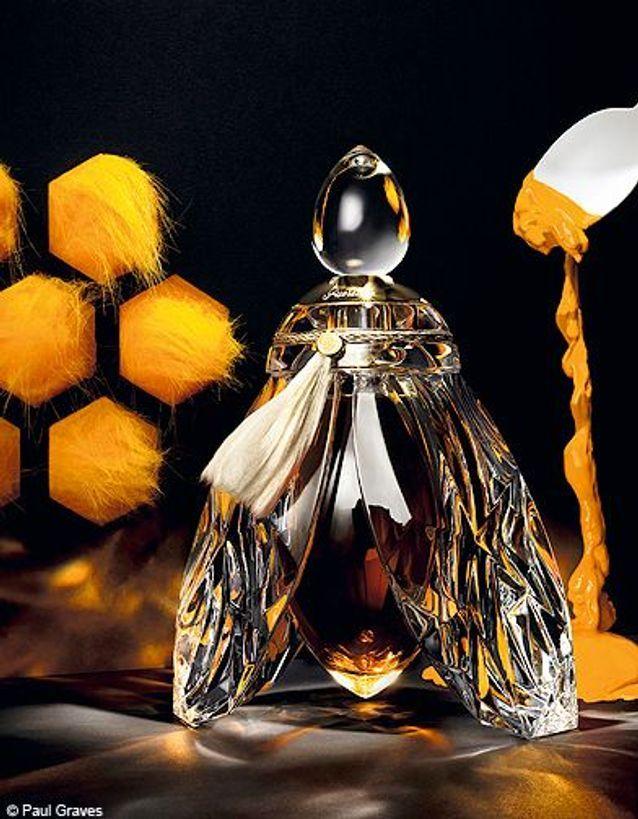 Beaute tendance shopping nouveautes parfums cadeaux noel guerlain