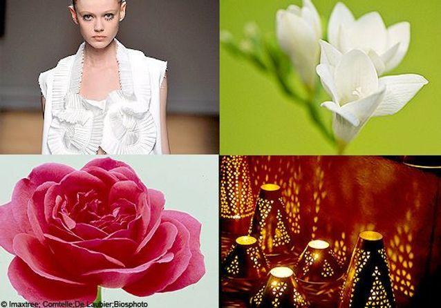 Shopping Senteurs : un bouquet pour les beaux jours