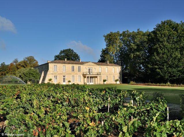 Visitez en exclusivité le château Smith Haut Lafitte