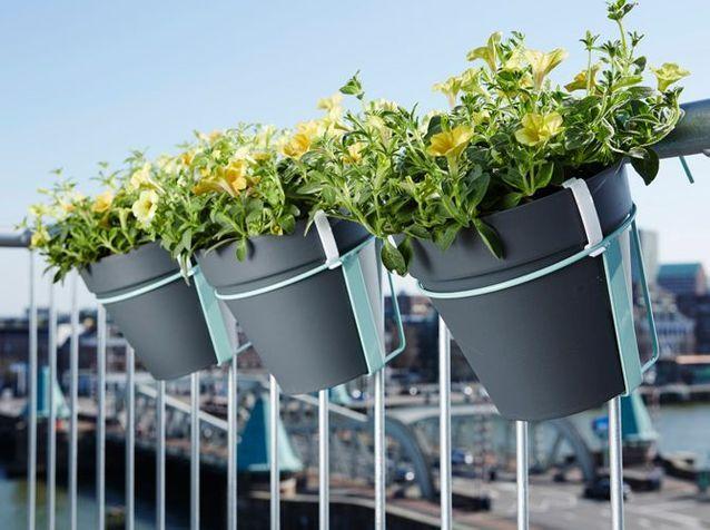 Jardinières de balcon : notre Top 8 5