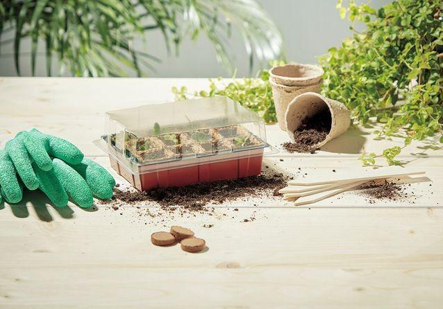 Des kits de plantation pour jardiner même sans extérieur