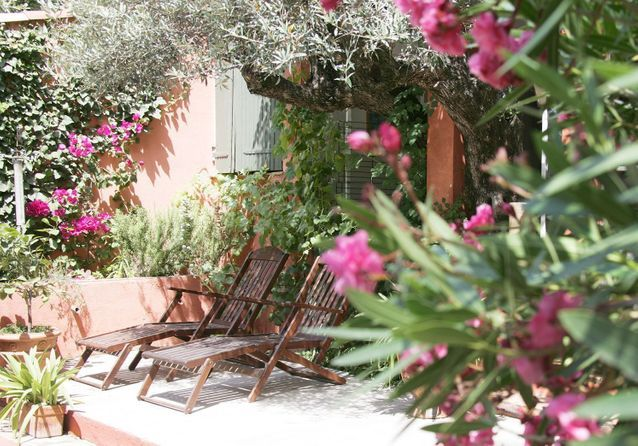 Quelles plantes choisir pour un jardin méditerranéen ?