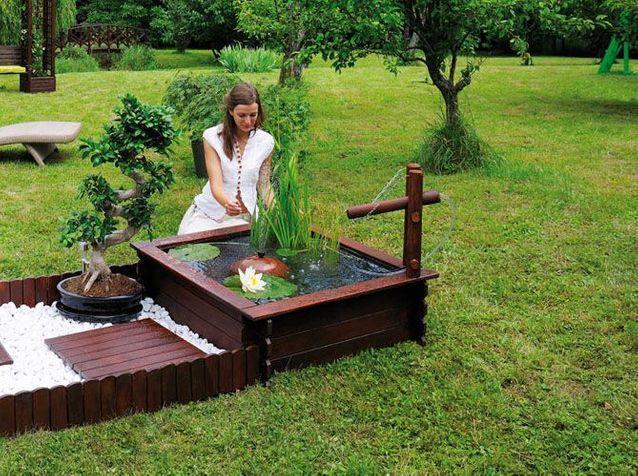 bassin de jardin nature