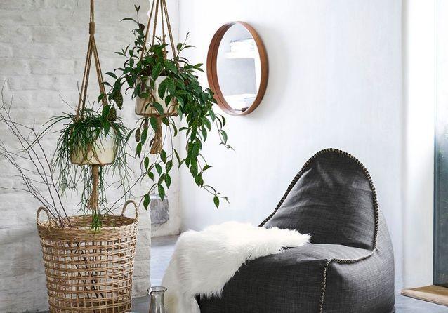 Pot suspendu : nos plantes prennent de la hauteur !