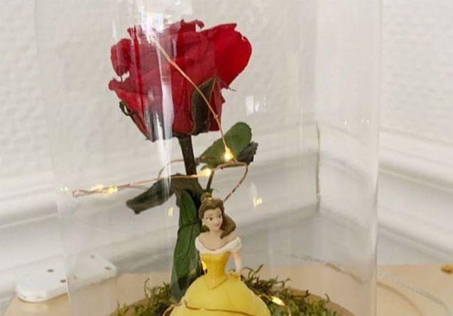 Un objet, un film : la rose éternelle de « La Belle et la Bête »