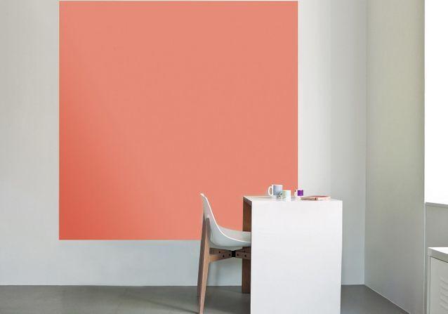 En 2019, la couleur Pantone se nomme Living Corail