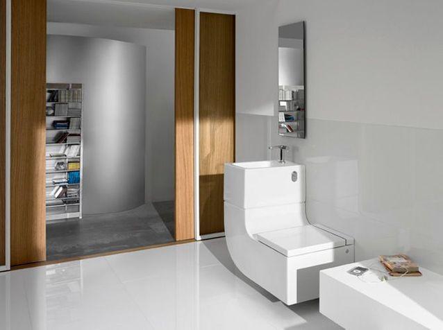 Grand WC : Aménager Et Décorer Les Toilettes