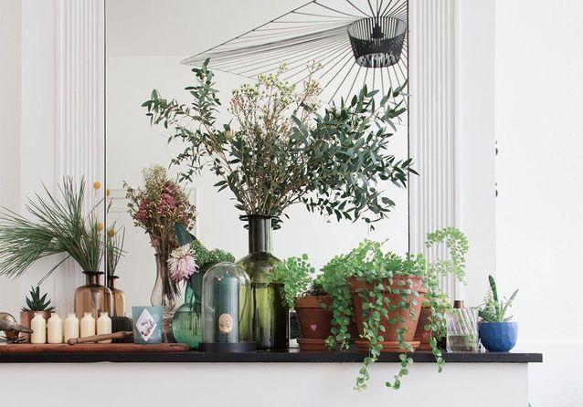 20 idées pour végétaliser son intérieur sans perdre de place