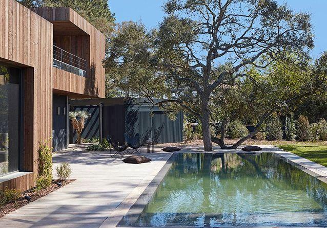 Une maison en bois moderniste dans la pinède d'Anglet