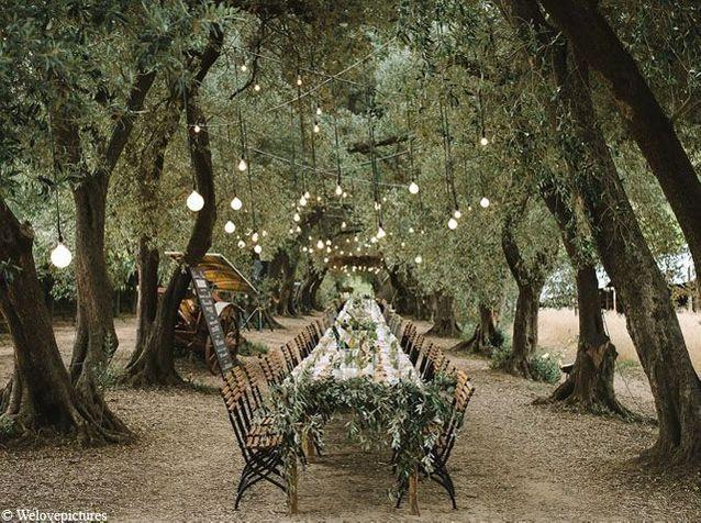 Créez un endroit magique dans les bois