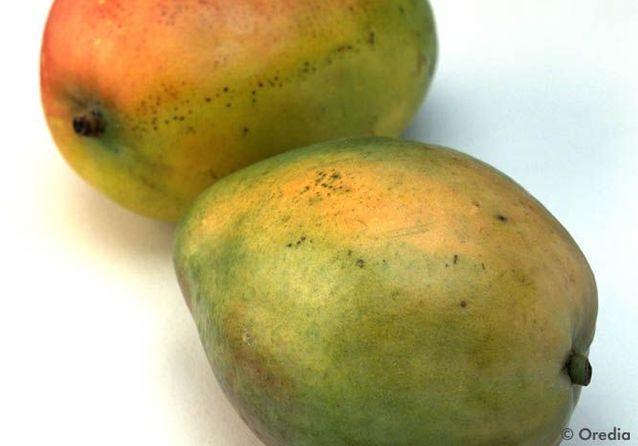 10 idées pour cuisiner la mangue autrement