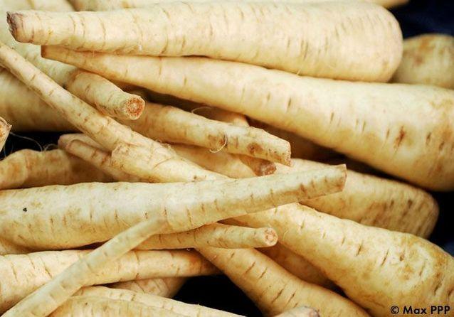 On fonce sur les légumes racines