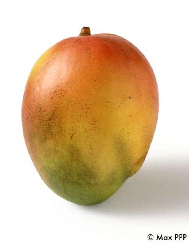 Vinaigrette mangue citronnelle