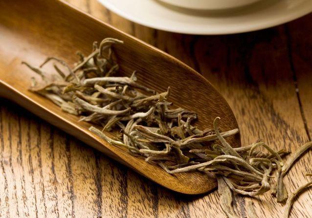 30 recettes thé-rriblement bonnes