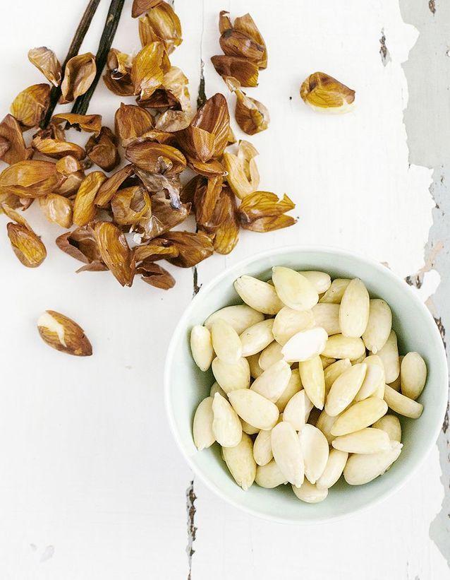 Les oléagineux sont des aliments gras qui font maigrir