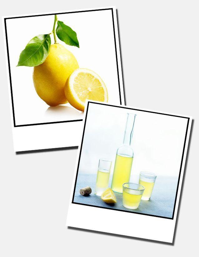 6  Citron  Limoncello