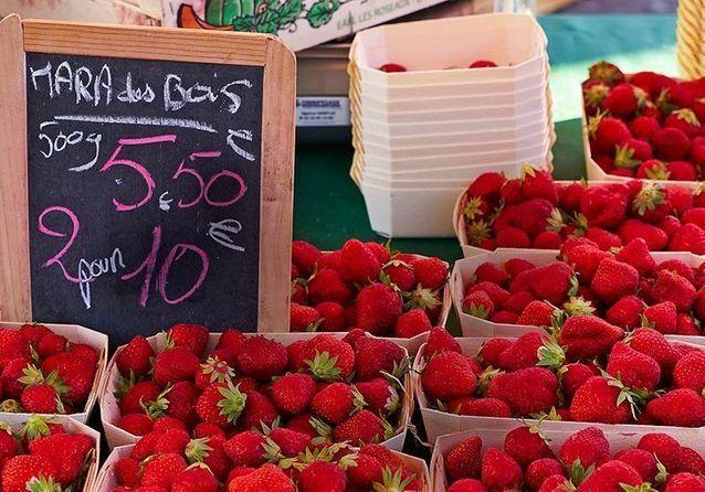Reportage en Normandie, au pays des fraises de pleine terre