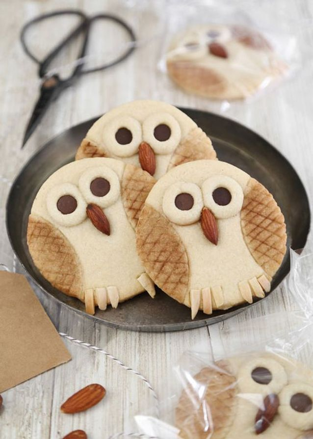 Biscuits hibou