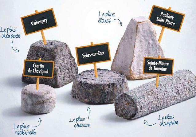 Fromages de chèvre : comment les choisir et les déguster ?