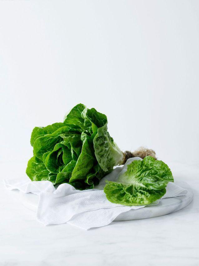 Fruits et légumes de saison mai : la laitue