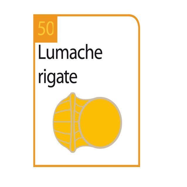 Lumache rigate