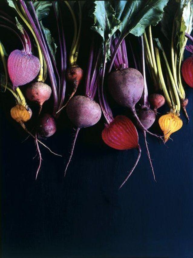 Fruits et légumes de saison en octobre : la betterave