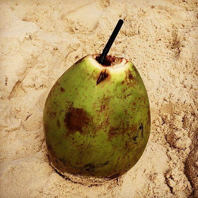 De l'eau de coco comme Alessandra Ambrosio