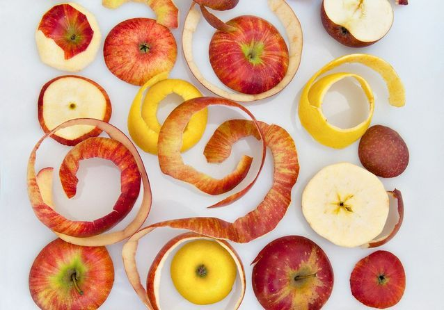 Quelle pomme pour quelle recette ?