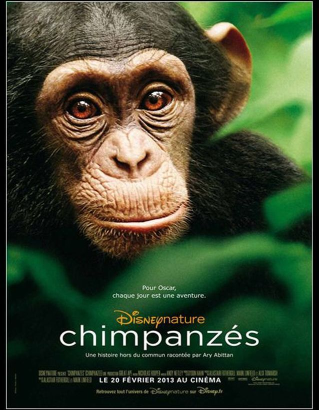 « Chimpanzés » de Mark Linfield et Alastair Fothergill