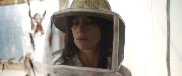 « La Nuée », le film grouillant de sauterelles de Just Philippot
