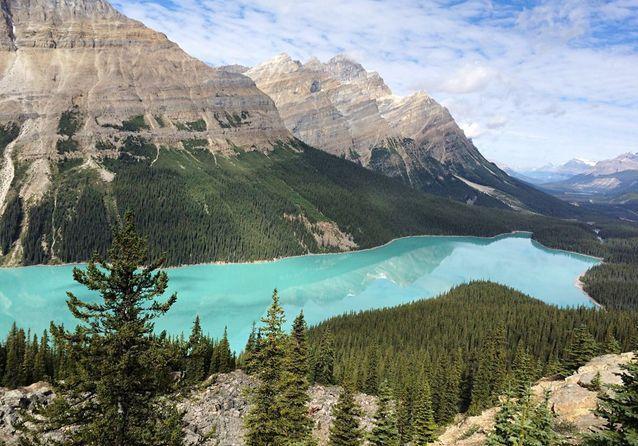 Le lac Peyto, au Canada