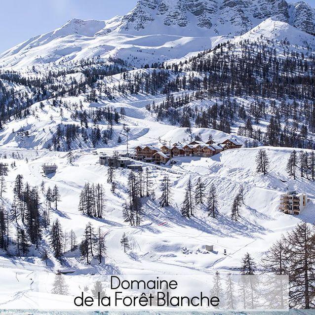 Domaine de la Forêt Blanche