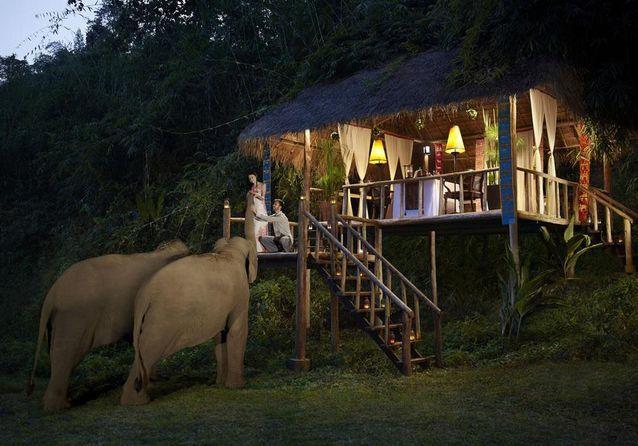 Le Anantara Golden Triangle Camp, en Thaïlande