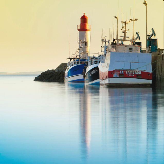 Le port de la Cotinière et ses bateaux de pêche colorés.