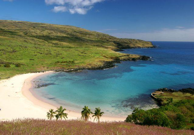 La plage de sable fin d'Anakena, située dans le parc national de Rapa Nui.