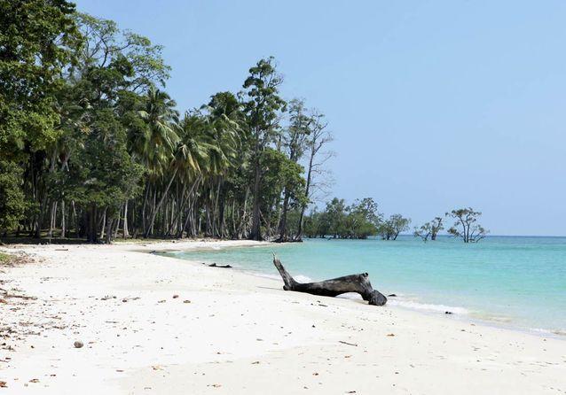 Longue étendue de plage de Lalaji.