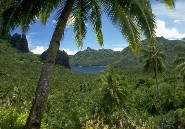 L'île de Hiva Oa, surnommée « le jardin des Marquises », est l'endroit où reposent Jacques Brel et Paul Gauguin.
