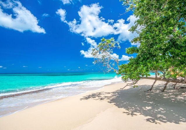 GRAND PARADISE PLAYA DORADA, EN RÉPUBLIQUE DOMINICAINE