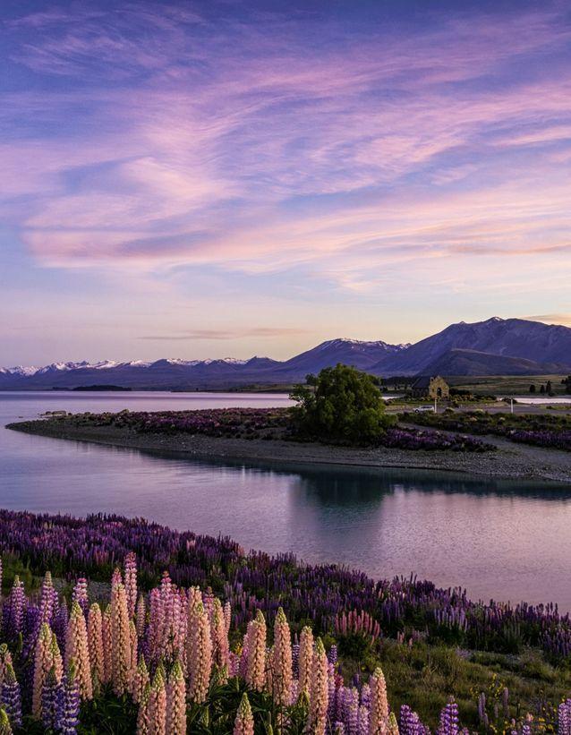 8) La Nouvelle Zélande