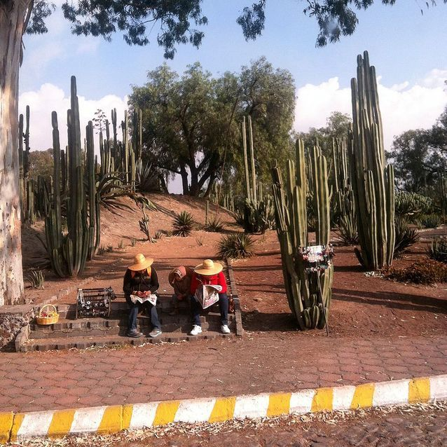 Direction Teotihuacan