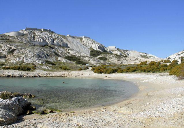 La plage de l'archipel du Frioul