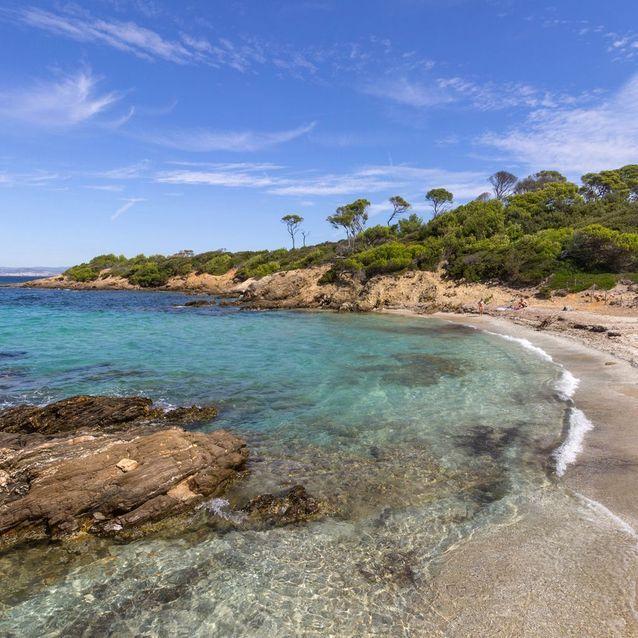 Lequin, sur l'île de Porquerolles (France)
