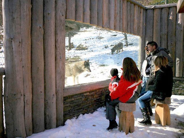 Pour hurler avec les loups : le Parc Animalier des Pyrénées, Ayzac-Ost
