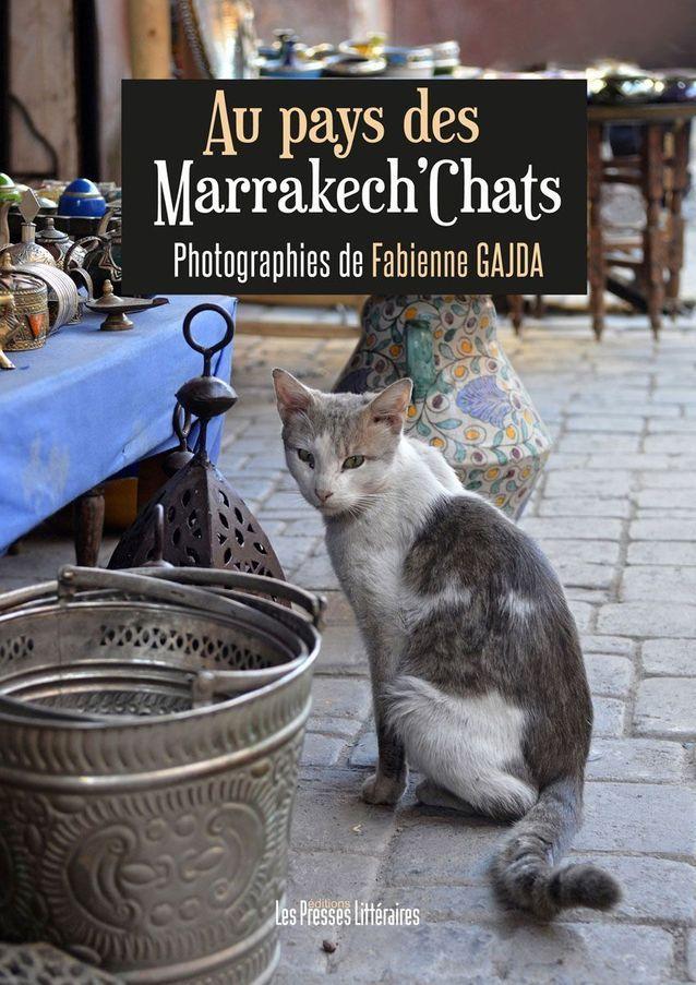 « Au pays des Marrek'Chats » de Fabienne Gajda (Les Presses Littéraires)