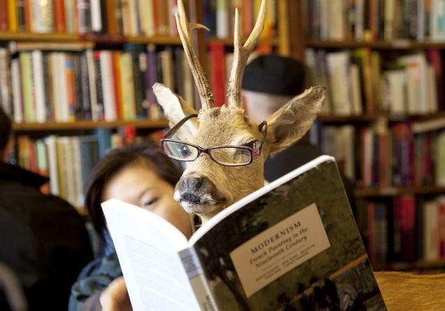 9 livres drôles pour booster son moral à l'approche de l'hiver