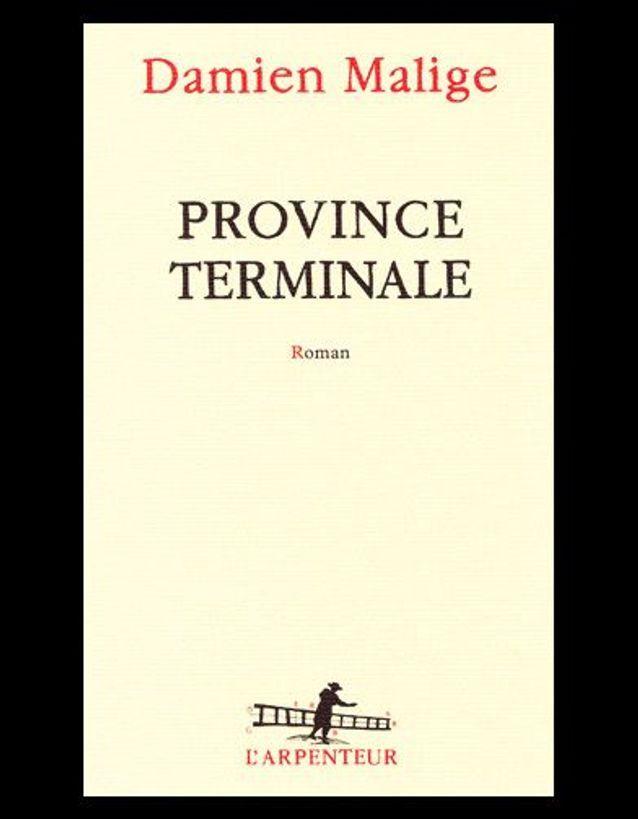 « Province terminale », de Damien Malige (L'Arpenteur Gallimard)