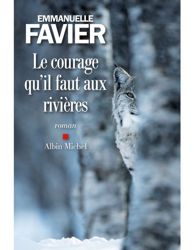 « Le courage qu'il faut aux rivières » d'Emmanuelle Favier (Albin Michel)