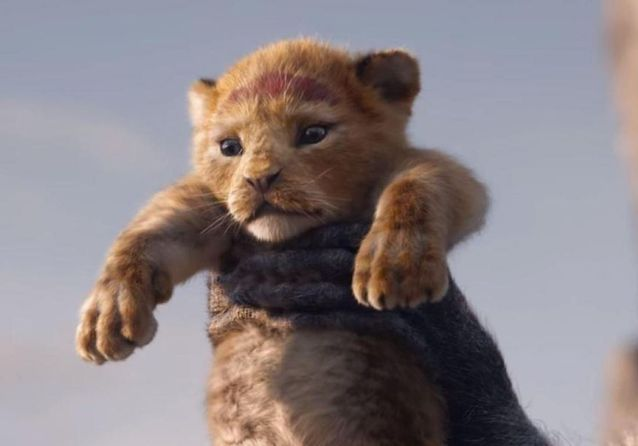 Le Roi Lion »