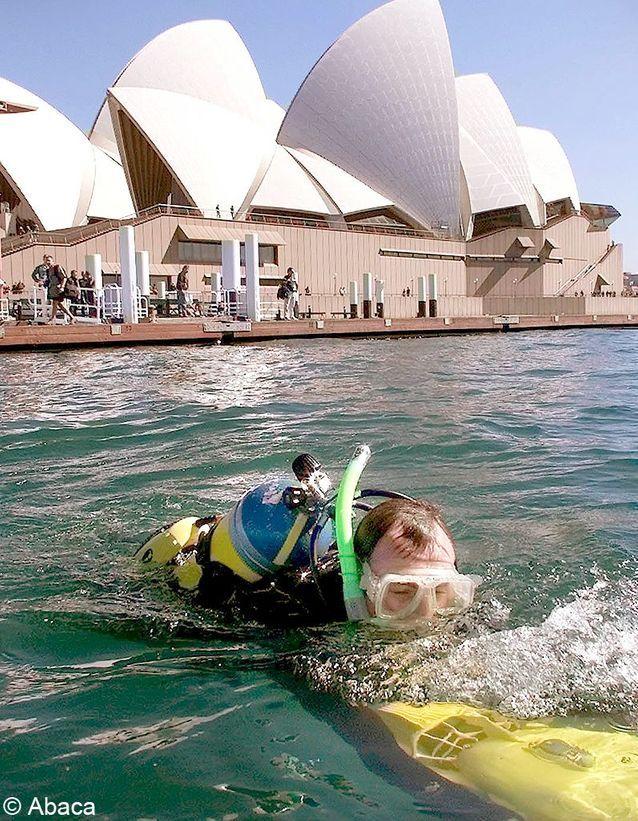 Requin triathlon Sydney